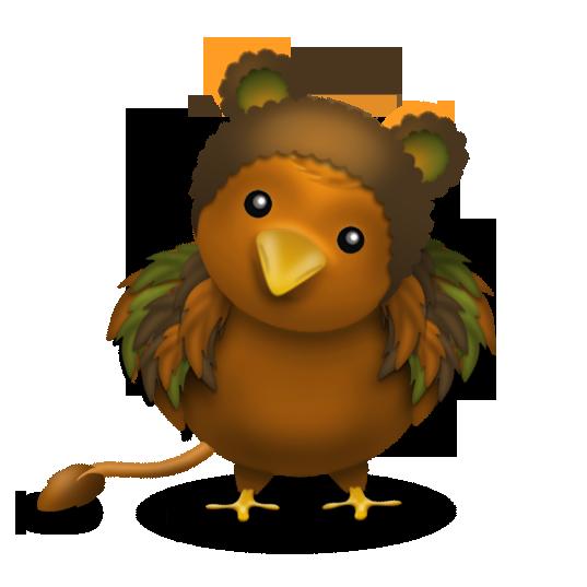 bird_druid